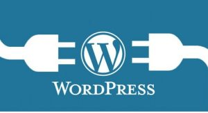 plugins essenciais para WordPress
